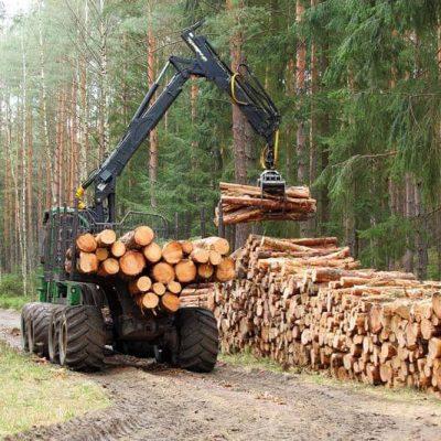 Rádiové diaľkové ovládače REMdevice pre lesnú techniku   TOP CRANES